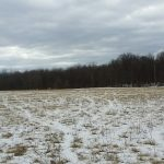 Columbia County Land