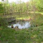 Columbia County NY Real Estate - Lake and Pond on 40 Acres, 315 Pond Rd, Rhinebeck, NY 12572