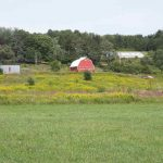 Columbia County Farms Former Orchards, 1008 Route 81, Coxsackie, NY 12042