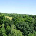 Columbia County NY Real Estate 185 Acres For Residential Development, Highland Road Chatham 12037