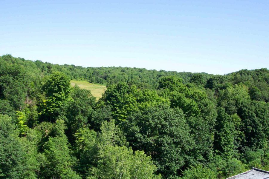 185 Acres For Residential Development, Highland Road Chatham 12037