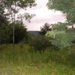 Lexington Land 10 Acres 2 Ponds