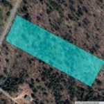 Jewett Building Lot 5 Acres Wooded