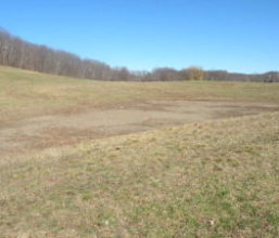 Ancram Farm Estate 57 Acres, Long Drive to Building Site, Barns 12502