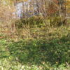 Cairo Land Auction Creek Frontage 12413