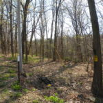 Germantown Land 26 Acres 12526