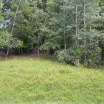 Copake Land 60 Acres Copake Lake Area 12516