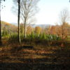 Copake Overlook Rd 12 Plus Acres Privacy 12516