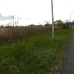 Greenport Fairview 7 Acre Commercial/Residential 12534
