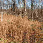 Claverack-Philmont Approved Lots 12565