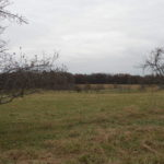 Columbia County Farm Vineyard Orchard 97 Acres 3 Barns 12526