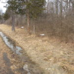 Germantown Land 6 Plus Acres Lovely Road 12526 SOLD