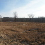 Old Chatham 6.8 Acres 12184 Sold