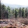 Hillsdale NY Land Auction Views Sold