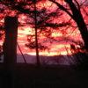 Hudson NY Farm Sale Panoramic Catskill Views 12534