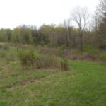 Gallatin Land 20 Acres Open Wooded 12567