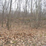 Gallatin Land 57 Acres Great Hunting 12523 Sold
