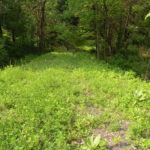 Gallatin NY Waterfront Land Roe Jan Creek 1 Acre 12571