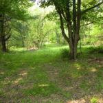 Gallatin NY Land Roe Jan Creek 1 Acre 12571