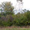 9-21-2012-0121