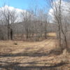 Windham 10 Acres BOHA Great Building Lot for Upscale Home 12496