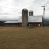 #3 dairy barn