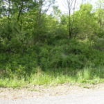 Claverack Land 9 Plus Acres 3 Lots Philmont 12565