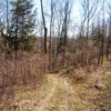 Greenville Land 39.7 Acres  Septic, Well Electric in Place 12083