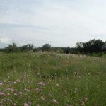 Hudson-Claverack Farm 58 Acres