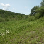 Ancram Land 330 Acres Views Secluded 3 Road Fronts 12502