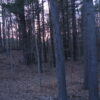 Catskill Land 5Plus Acres Residential Commercial Route 23A 12414
