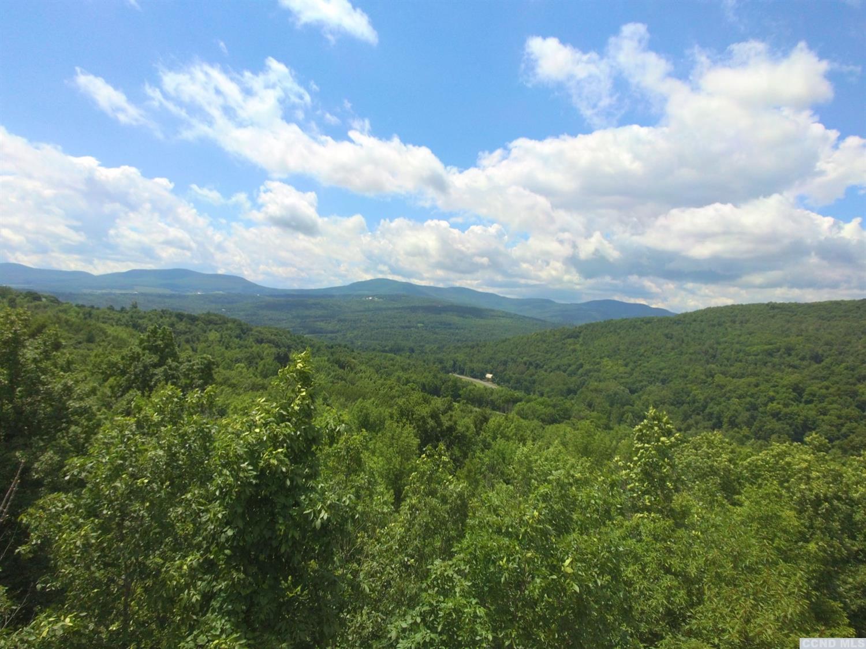 Preston Hollow 66 Acres with Mountain Views 12460