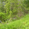 Ghent Land 2 Acres Great Location Near Omi