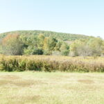 Hillsdale Berkshire Ranch 2,290sf 5 Private Acres 12529
