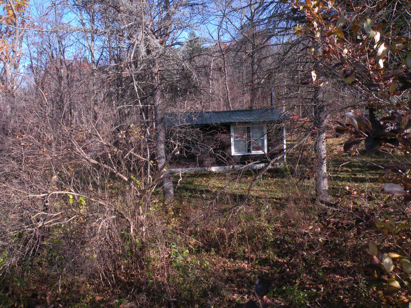 Taghkanic Cabin 3Plus Acres Creek.