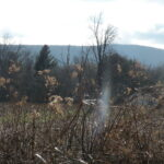 Copake Land 6+ Acres Open Fields and Views 12516