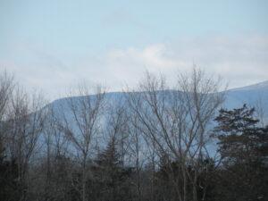 Stockport Land Catskill Views 300+ Frontage Quiet Road  12534