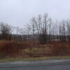 Nassau 7.7 acres with Well & Septic in Convenient Location 12123