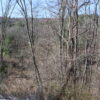 Hillsdale Hunting Preserve 283 Acres Coming on Market 12529
