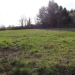 Taghkanic Building Lot 1 Acre 12521 Beautiful Open Field | Barns & Farms